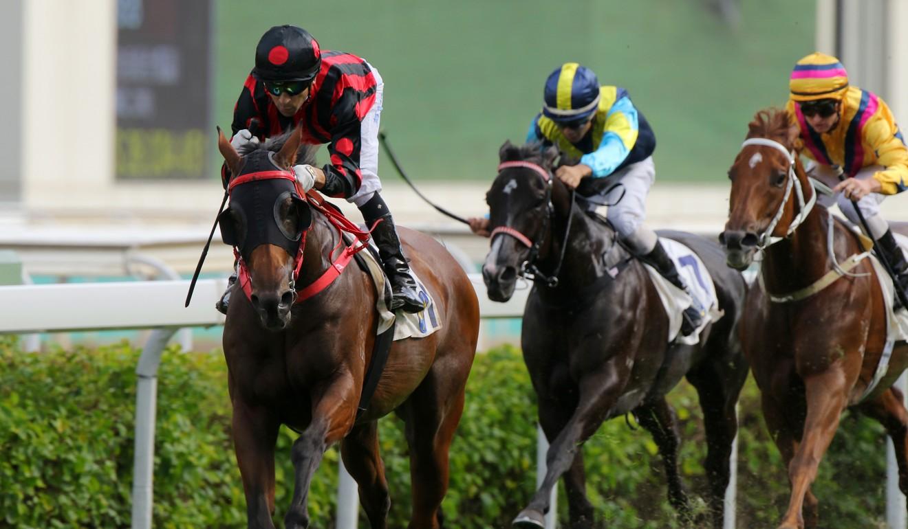 Hong Kong racing's changing of the guard sees Thewizardofoz