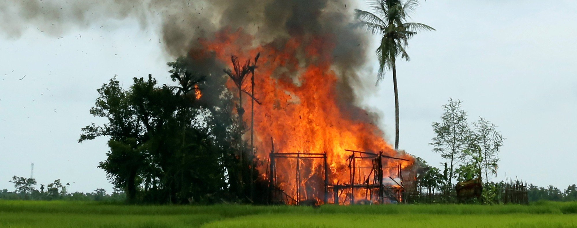A house on fire in Rakhine state. Photo: Reuters