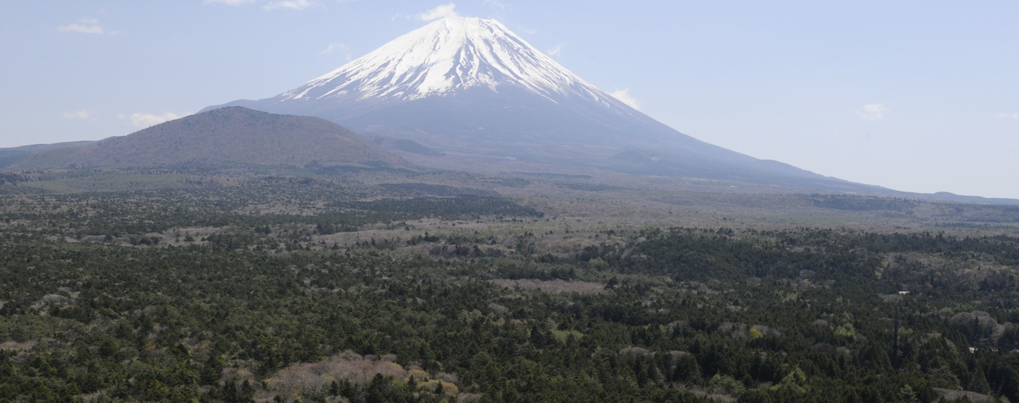 Mount Fuji and Aokigahara, the 'suicide forest'. Photo: Kyodo
