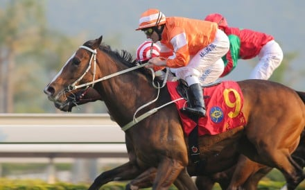 Blazing Speed, ridden by Mirco Demuro, upset some big names to win the Stewards' Cup in January. Photo: Kenneth Chan