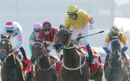 Douglas Whyte celebrates after winning the Jockey Club Sprint on Peniaphobia, but there were a number of hard luck stories, including Aerovelocity (second from left) and Sterling City (right). Photo: Kenneth Chan