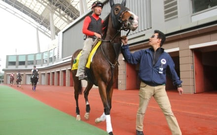 Japanese trainer Hideaki Fujiwara leads Hong Kong Sprint candidate Straight Girl around the parade ring after a workout on the track. Photos: Kenneth Chan