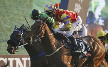 Designs On Rome (Joao Moreira) edges out Military Attack (Zac Purton) to win the HK$25 million Longines Hong Kong Cup at Sha Tin. Photo: AP