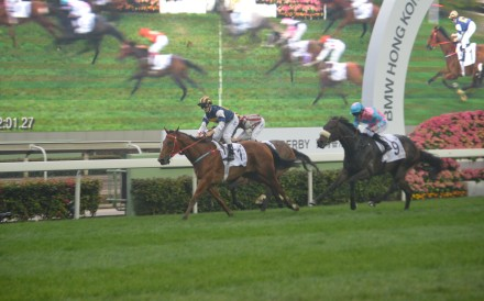 Zac Purton celebrates after steering Luger to victory in the BMW Hong Kong Derby. Photo: Andrew Hawkins