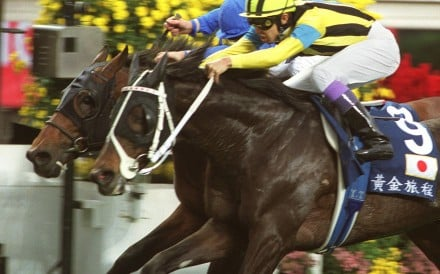Stay Gold just gets up in the final stride to nab Ekraar in the Hong Kong Vase. Photo: SCMP Pictures
