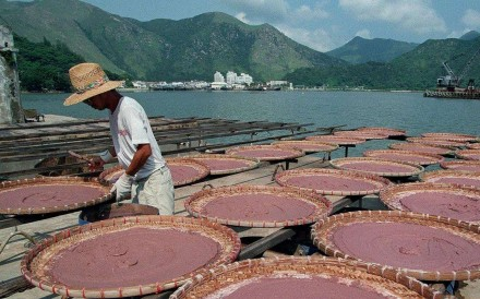 A worker processes shrimp paste in Tai O, Lantau Island. Pictures: SCMP