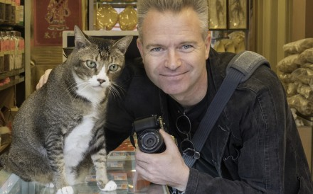 A studio in To Kwa Wan is hosting a cat jamming session for all ages to coincide with its exhibition of Dutch photographer Marcel Heijnen's shots of Hong Kong shop cats
