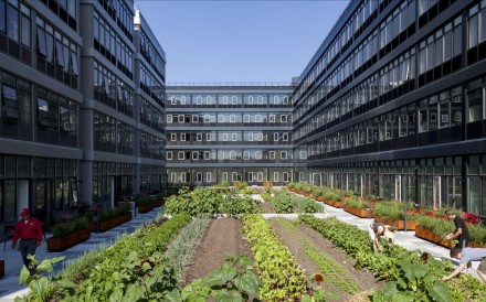 Urby, a building on Staten Island in New York, encourages its residents to pick fruit and vegetables at its 5,000 square foot on-site urban farm. The building's farmer-in-residence also gives gardening tips. Photo: SCMP handout