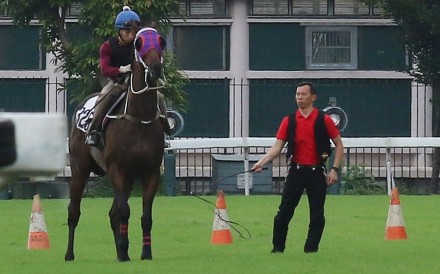 """Assistant trainer Cody Mo uses the """"buggy"""" whip to try to coax Pakistan Star during Monday's trial. Photos: Kenneth Chan"""