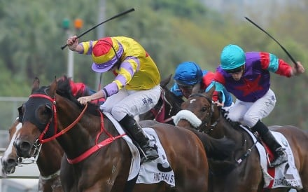 The thought of contesting the HK$18 million feature did not enter the trainer's mind until March 3, but the gelding delivers on the biggest stage