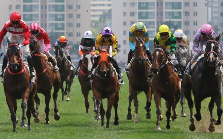 The Hong Kong Jockey Club runs a world-class operation at Sha Tin and says it is more than willing to assist Beijing in developing horse racing in Hainan. Photos: Kenneth Chan