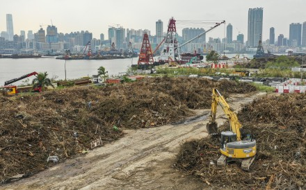 The government has piled a mass of tree waste at the former Kai Tak airport site. Photo: Winson Wong