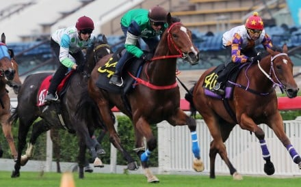 Glorious Spectrum (second from right) gallops during one of his trials. Photos: Kenneth Chan