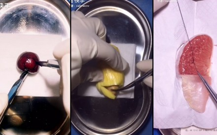 Wang Yexiao performs surgery on fruit in his videos. He has gained more than 100,000 followers on Kuaishou. Photo: Handout