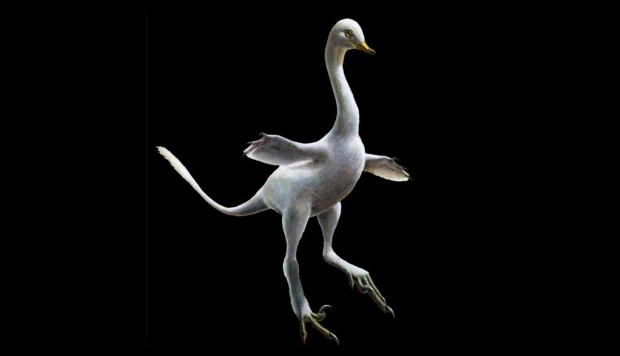 Ridiculous-looking dinosaur resembled duck, crocodile, swan and penguin