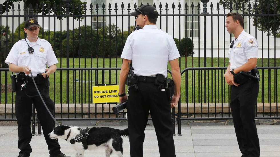 Us Secret Service Head Julia Pierson Takes Blame For White
