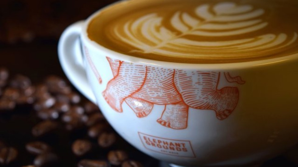 Hong Kongs 12 Best Coffee Shops South China Morning Post
