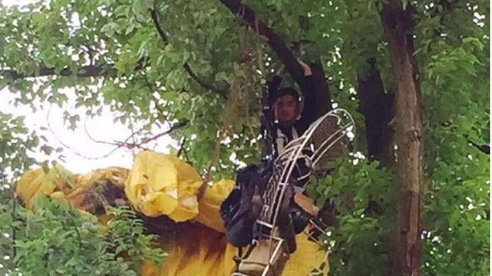 Falling In Love Chinese Man Gets Stuck In A Tree After