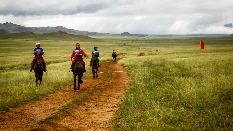Photo Essay Mongolias Fearless Child Jockeys Race For Glory At  Tessa Chan Report Writing Companies Uk also Essay On High School Dropouts  How To Write A Thesis For A Narrative Essay