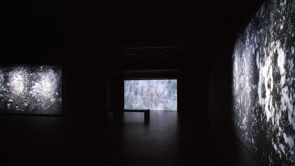 Hong Kongs Empty Gallery Where Groping An Artichoke In The Dark Is