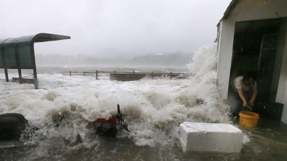 Typhoon Hato Could Cause Hk 8 Billion In Losses After No