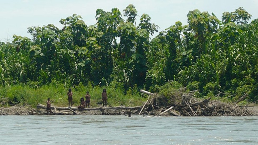 Evil people will kill you\' remote Amazon tribe warned | South China ...
