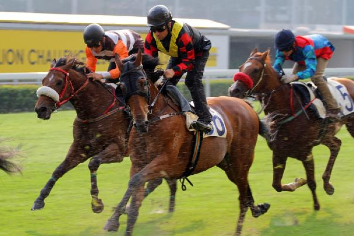 Andreas Suborics riding Rain Of Thunder (middle) and Richard Fourie on Ever Invincible (left). They are the only two jockeys who started the season and were not licensed for all of it. Photo: Kenneth Chan