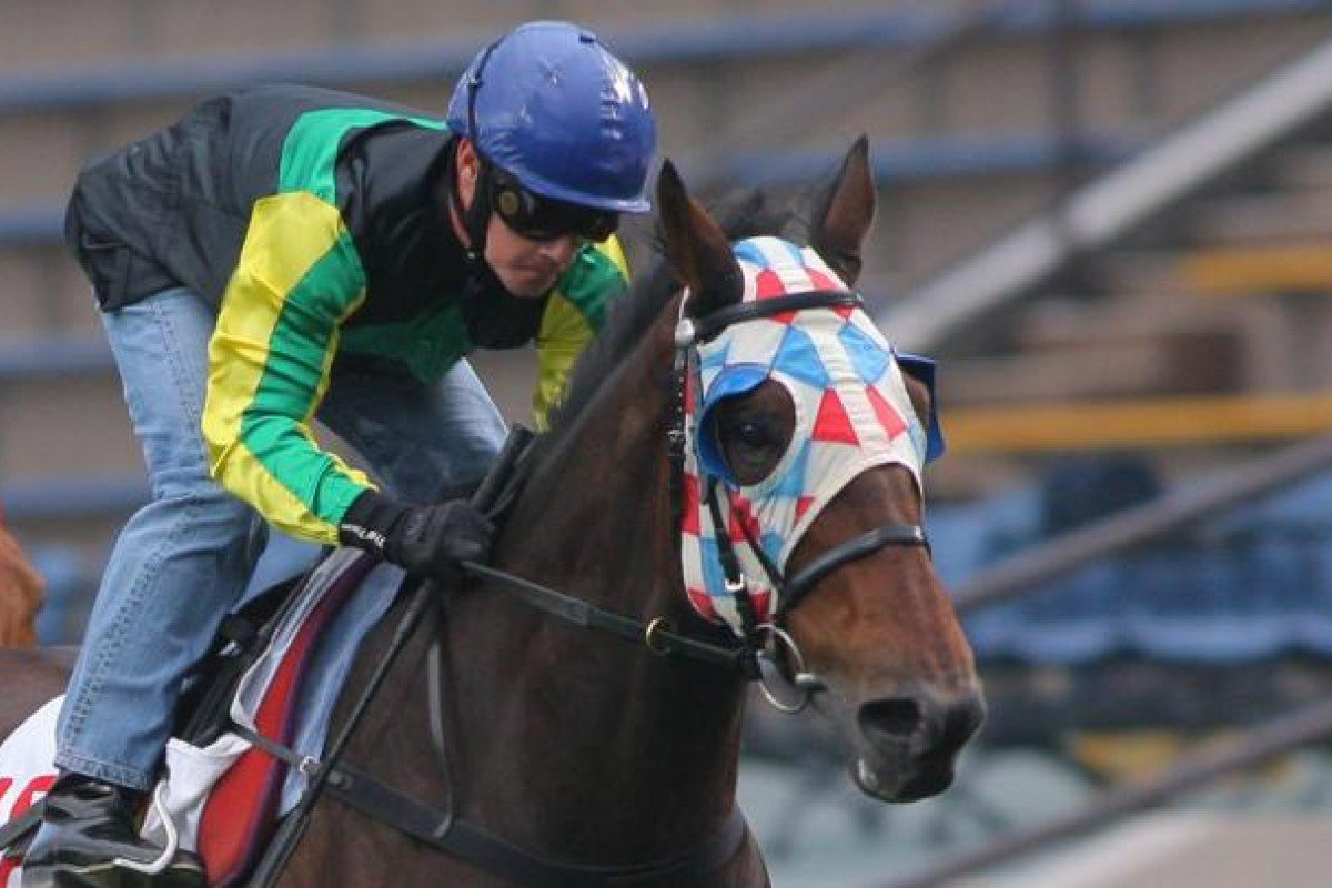 Uwillbeglorious has been consistent and always catches the eye on the training track.
