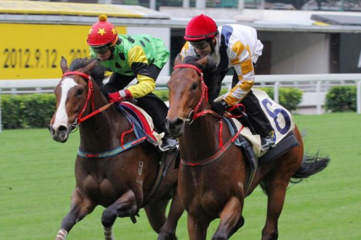 Electronic Fortune (inside) is no stranger to the Valley as he trialled last November over 1, 200m.