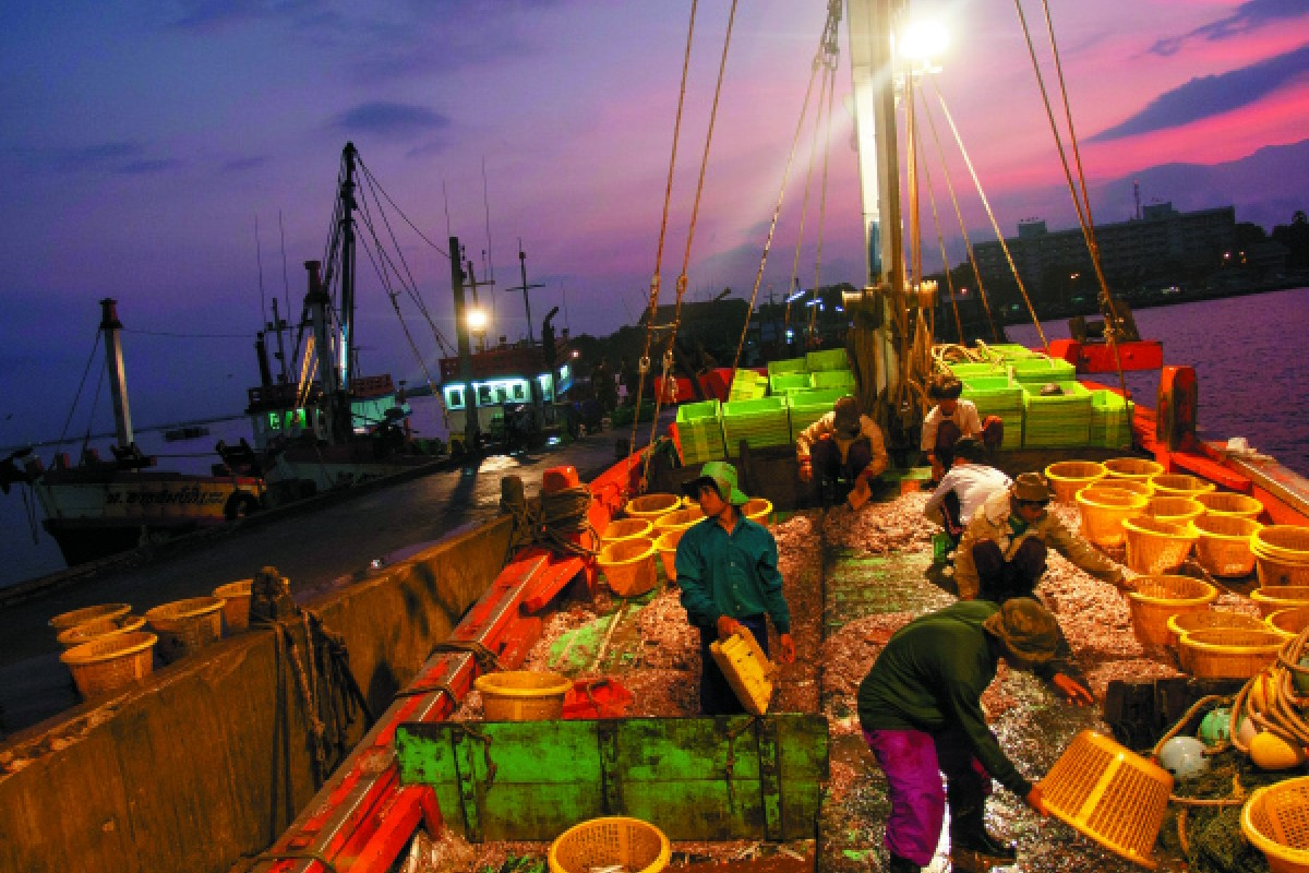 Fishermen sort fish at dawn in Chonburi province.