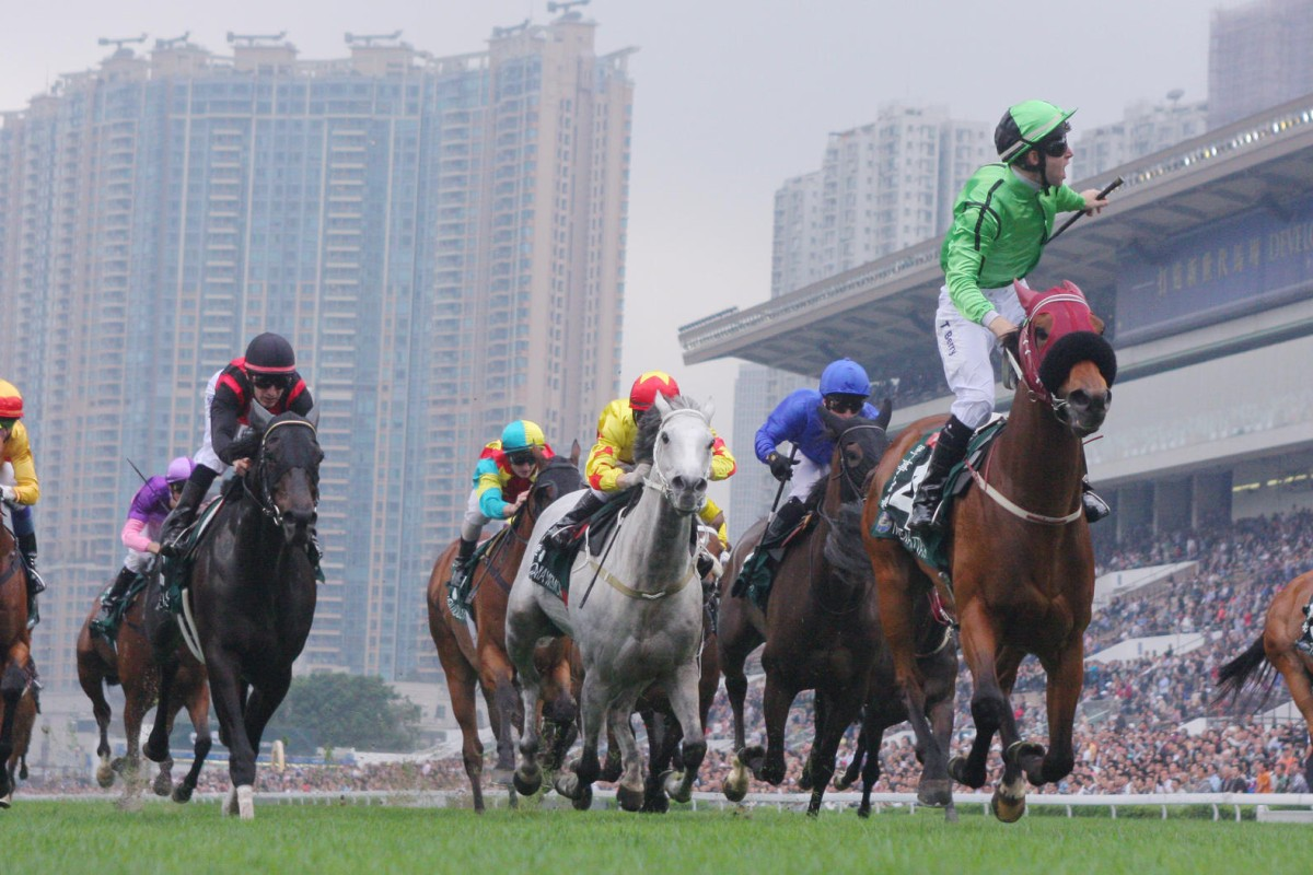 Military Attack won the QE II Cup and the Singapore Cup earlier this year, those wins ensuring he is the highest-rated horse in this year's Hong Kong Cup. Photo: Kenneth Chan