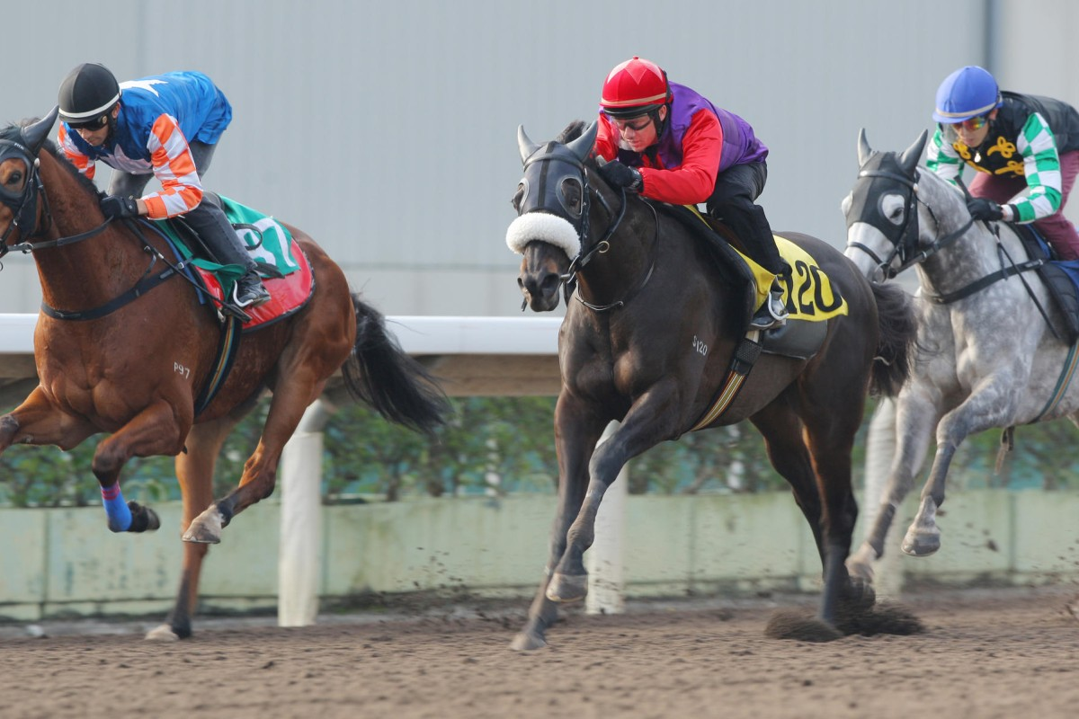 Dibayani (middle) made up solid ground late in his first run on Sunday. Photo: Kenneth Chan