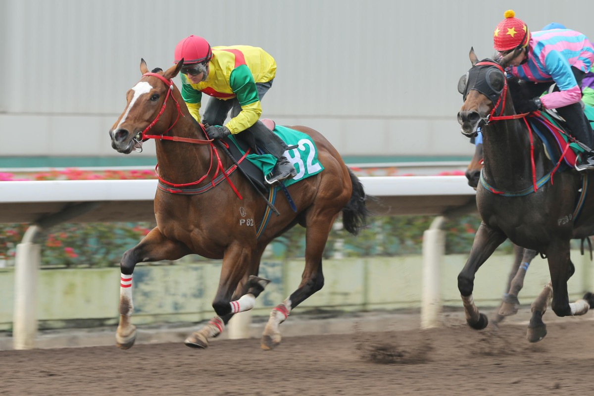 Back at work this week after his two-meeting suspension, Purton rode Joy Together at Sha Tin yesterday. Photo: Kenneth Chan
