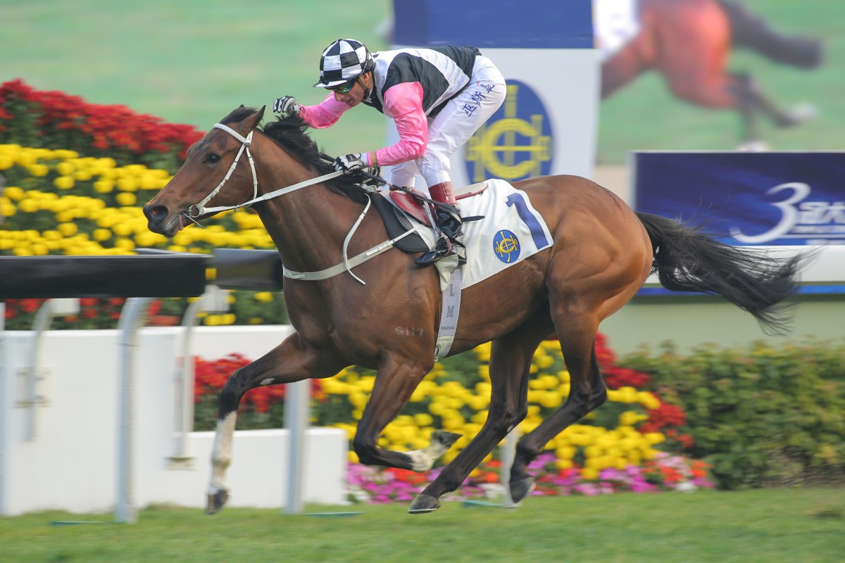 Tony Cruz: Beauty Flame can be my lucky number seven | HK Racing