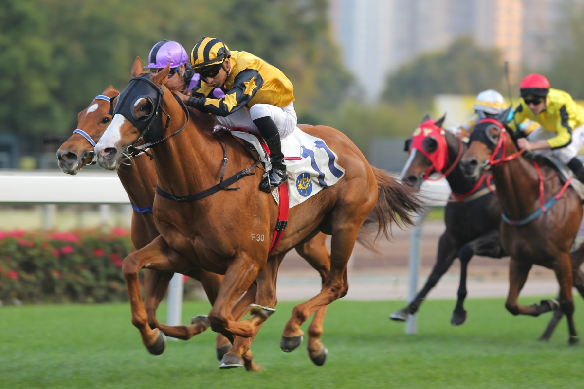 Formula Won (purple cap, Vincent Ho Chak-yiu) narrowly fails to peg back Divine Diya. He can atone at Happy Valley on Wednesday night. Photo: Kenneth Chan