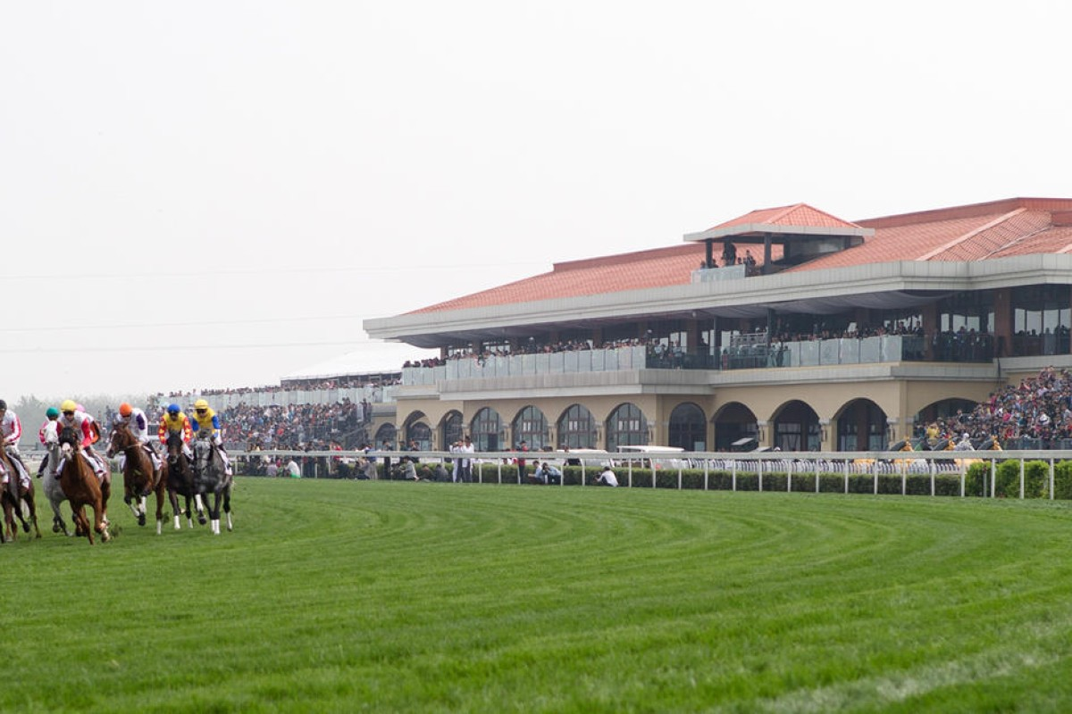 The inaugural Chengdu/Dubai International Cup drew praise, but what comes next without any betting. Photo: Dubai Racing Club