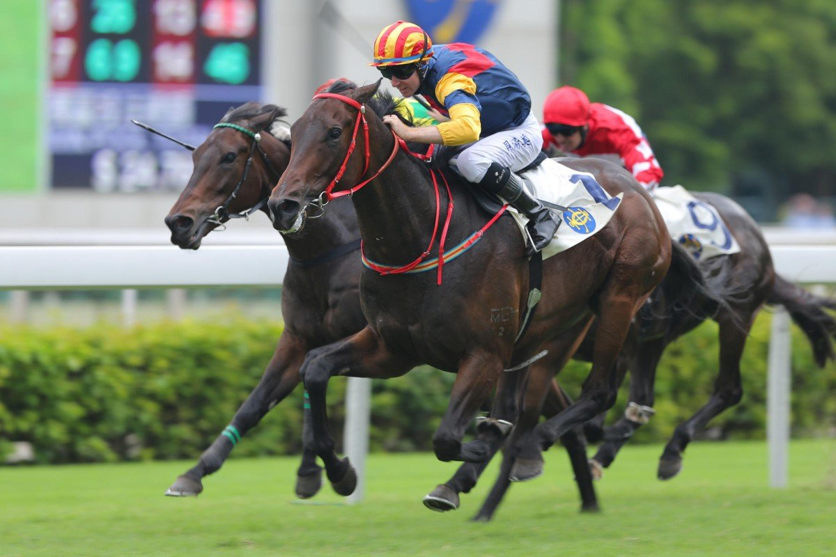 Industrialist Way, ridden by Tommy Berry, wins the third leg of the Triple Trio at Sha Tin last weekend. Photo: Kenneth Chan