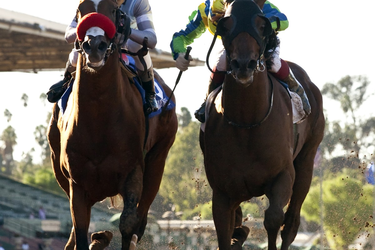 Rich Tapestry (Olivier Doleuze, right) wins the Santa Anita Sprint Championship from Goldencents (Rafael Bejarano) on Sunday morning, Hong Kong time. Photo: AP