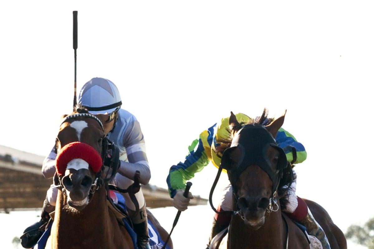 Rich Tapestry and Olivier Doleuze (right) beat Goldencents (Rafael Bejarano) in the Santa Anita Sprint Championship in California. Photo: AP.