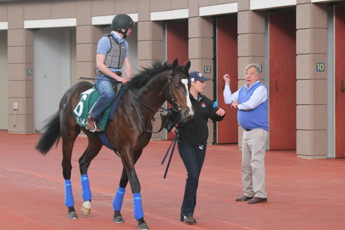 Sir Michael Stoute watches on as his Vase entrant Snow Sky is schooled in the Sha Tin parade ring. Photos: Kenneth Chan