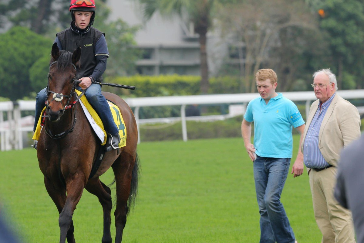 Trainer Tom Hogan (right) and assistant Eddie Power assess Gordon Lord Byron as he returns after a turf gallop. Photo: Kenneth Chan