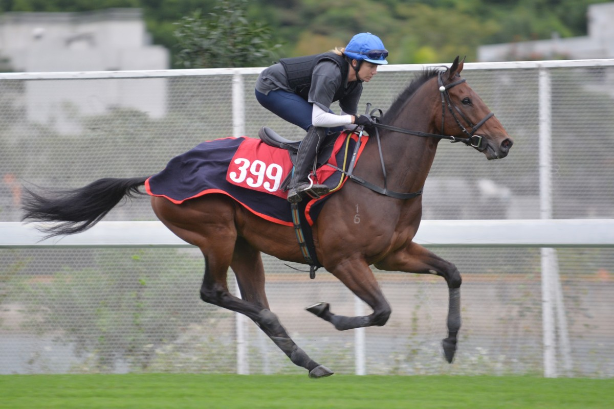 """Bev Millard, who rides Ambitious Dragon in his work, says he is """"moving well and feeling good"""". Photos: Kenneth Chan"""