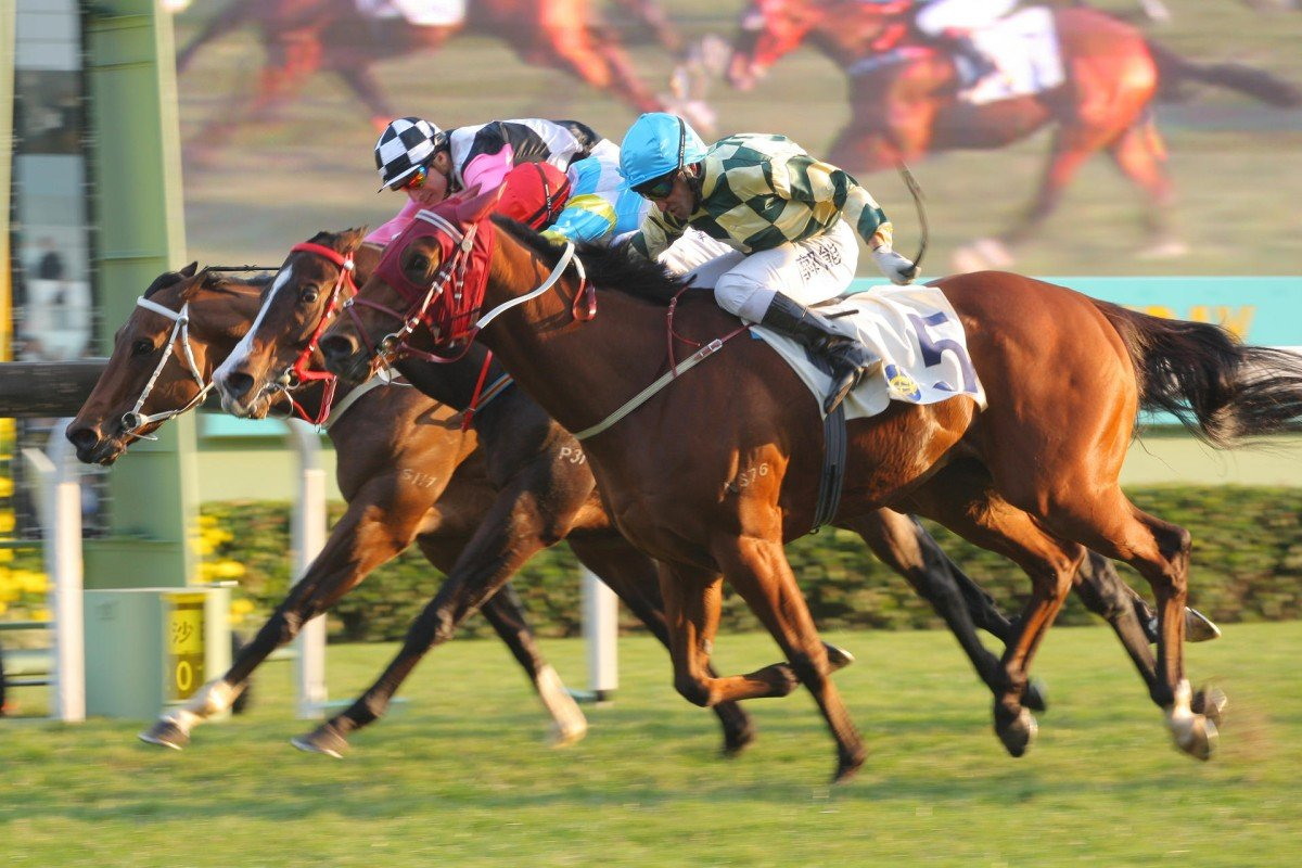 Rewarding Hero powers home in the Chinese Club Challenge Cup under Neil Callan, fulfilling trainer John Moore's prediction he would land a Group Three. Photo: Kenneth Chan