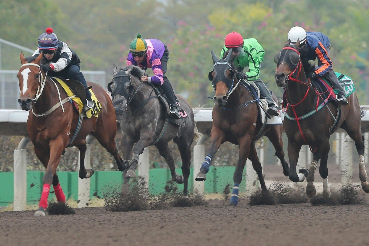 Military Attack (Zac Purton, second from right) trials in blinkers on the dirt at Sha Tin on Friday as he gears up for Group One targets at home and abroad. Photos: Kenneth Chan