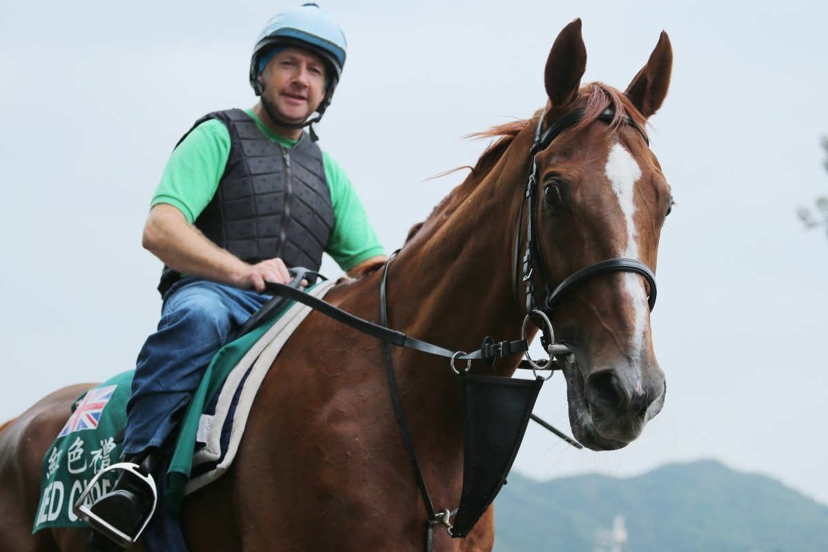 This five-time visitor to Hong Kong ranks on top in any list of globetrotting racehorses. Who is it? Photo: Kenneth Chan