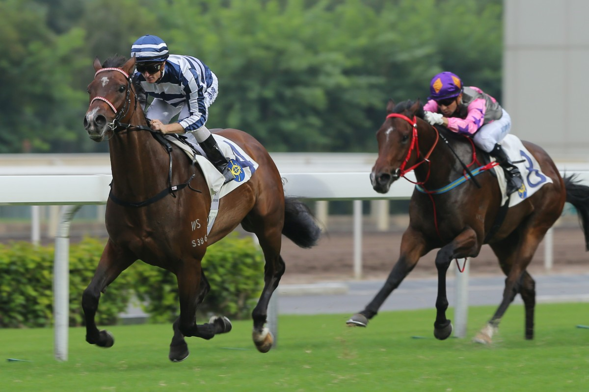 Packing Pins was an impressive winner earlier this month, but is currently outside the field for the Sha Tin Mile Trophy. Photo: Kenneth Chan