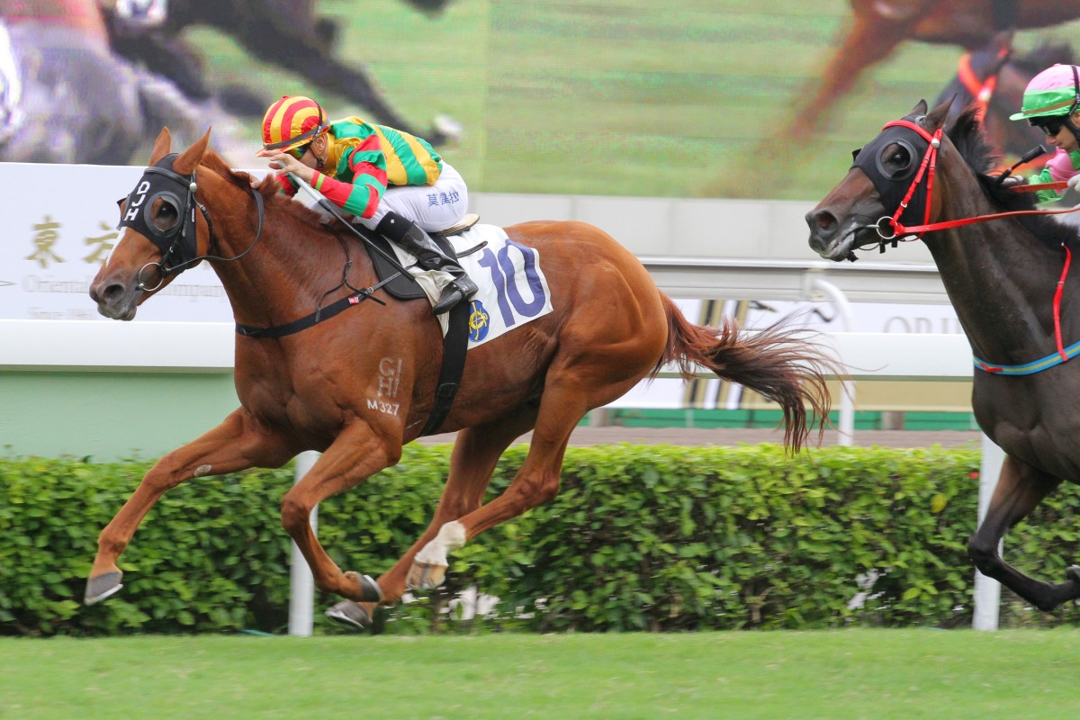 Bamboo Dance (Joao Moreira) holds off High Warrior (Brett Prebble) to make it five on end in a remarkable story for David Hall. Photo: Kenneth Chan