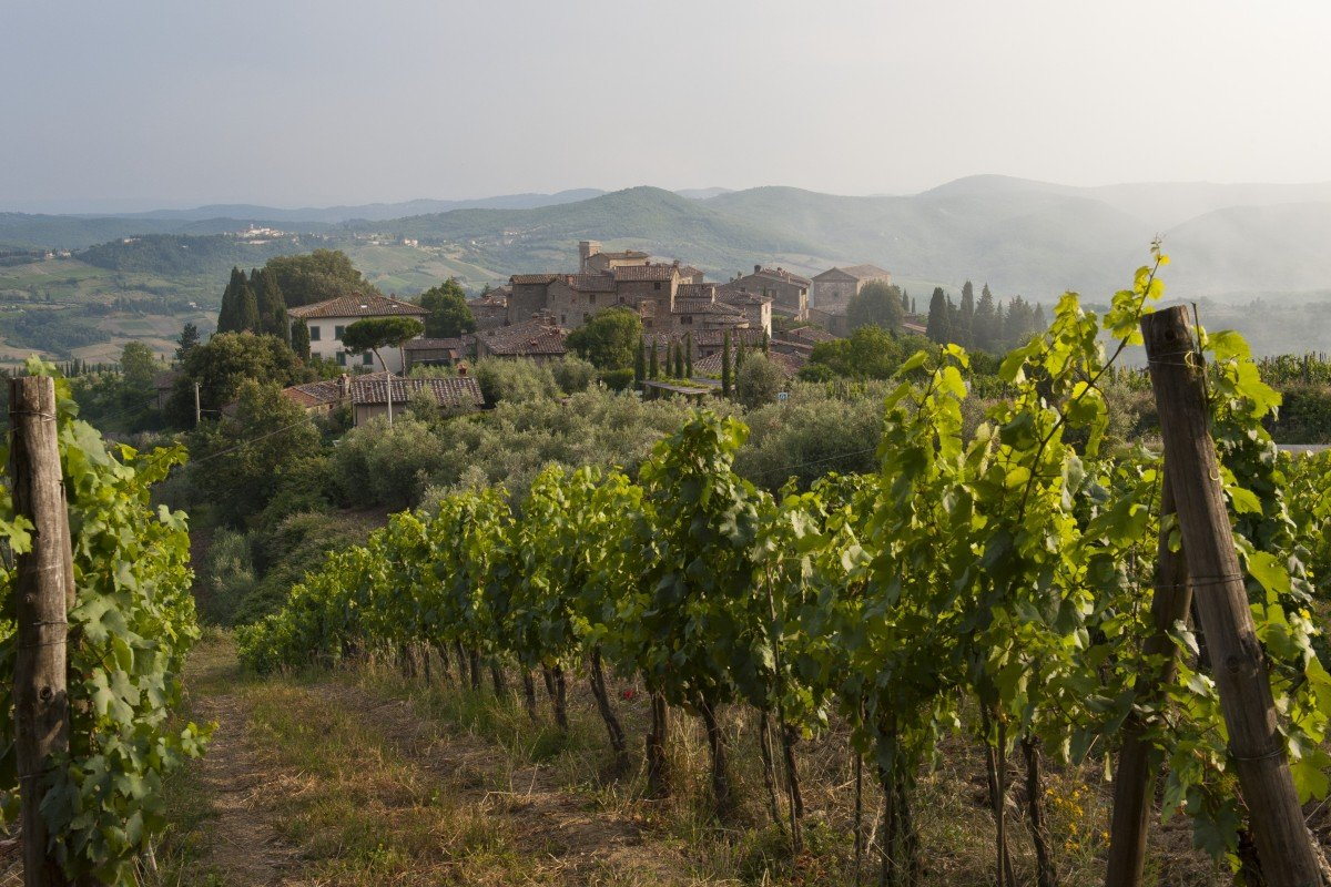 "Faced with falling quality, winegrowers used grapes not authorised for chianti, such as cuttings from Bordeaux, to improve their product, and soon won over the international wine press. The ""super Tuscans"" were born."