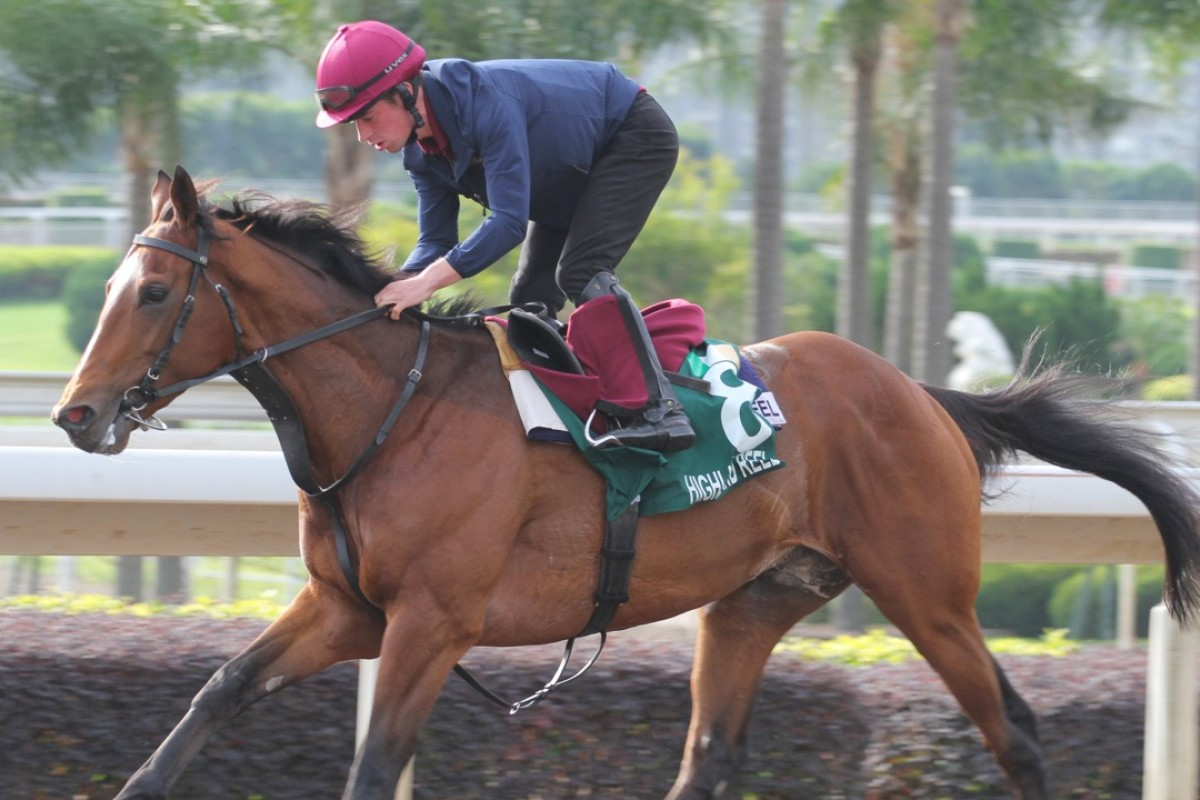 Highland Reel carries a great weight of hope for Aidan O'Brien in the Hong Kong Vase. Photos: Kenneth Chan