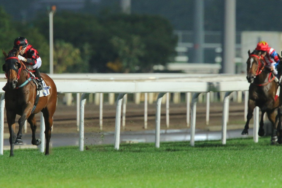 Thewizardofoz (Joao Moreira) is heading for the big time judging by his recent performances.
